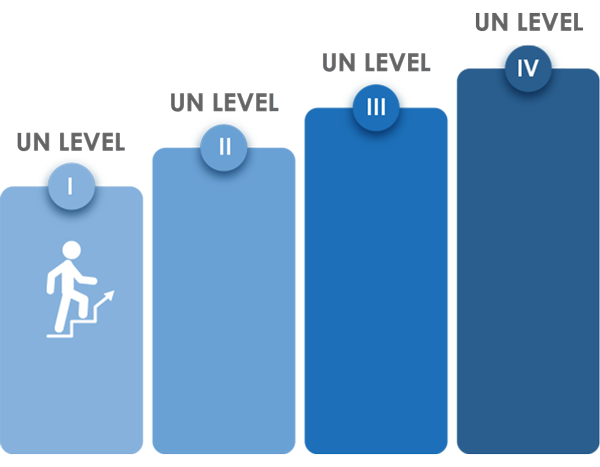 UN Language Levels